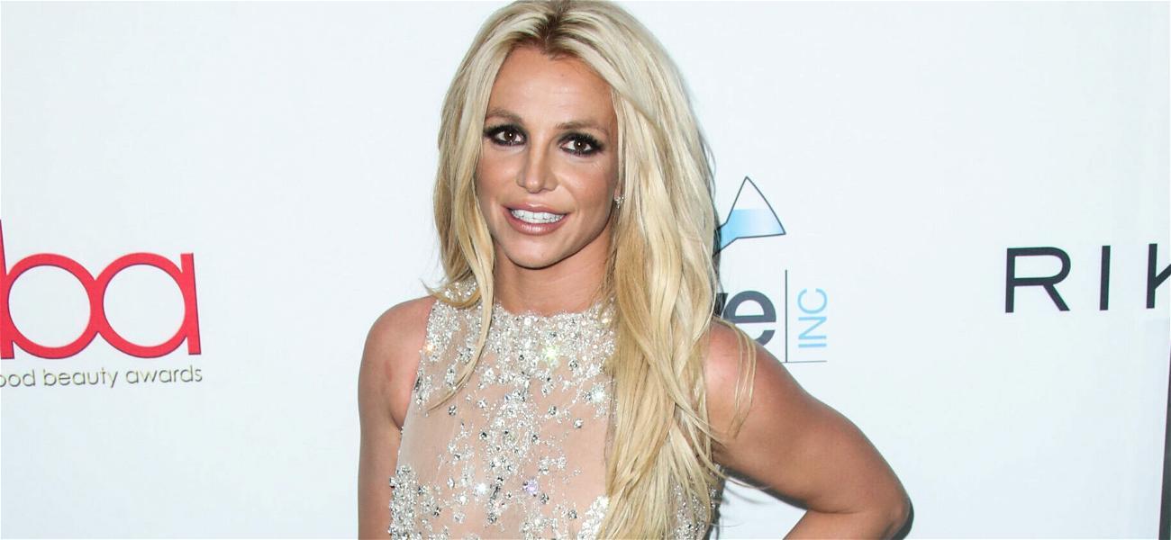 Jamie-Lynn Spears' Former Co-Stars Show Support For Sister Britney Spears