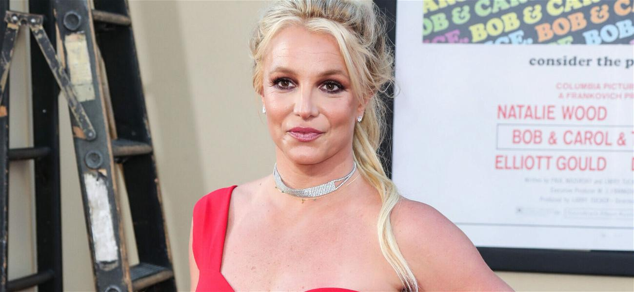 Britney Spears: I Want Out Of My Conservatorship To Get Married And Have Another Baby!!