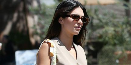 Kendall Jenner Files Restraining Order Against Man Who Mailed Her 'Rose Petals'