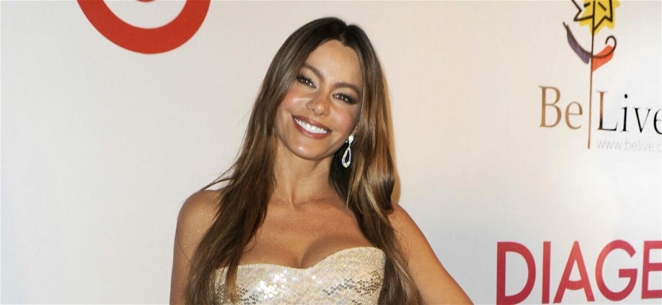 Sofia Vergara Rocks Summer Dress for 'Modern Family' Picnic