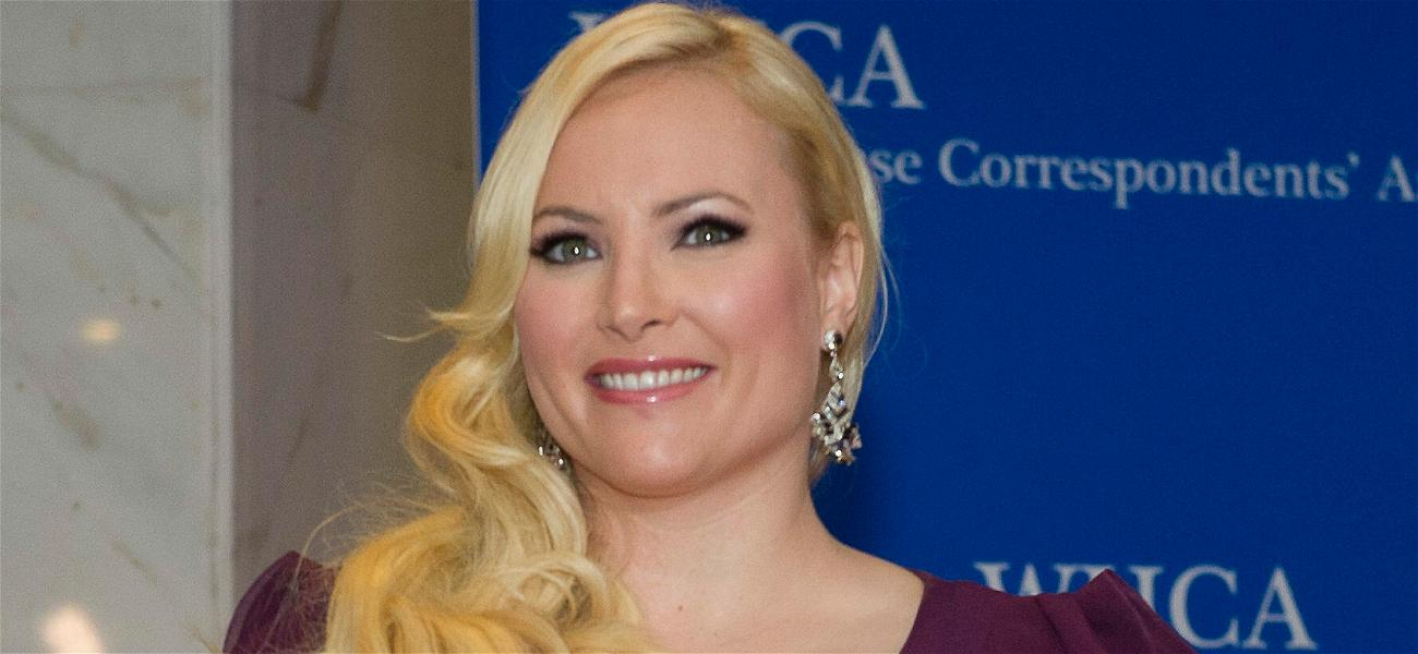 Meghan McCain Pleads With FBI To Save Britney Spears From 'Toxic' Conservatorship