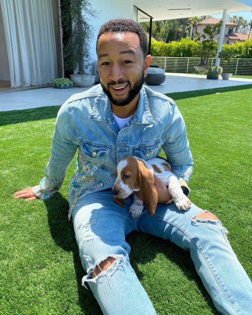 John Legend with a Basset Hound puppy
