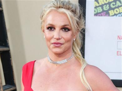 Britney Spears' Mom Supports Daughter Over Fear and Hatred For Dad, Jamie Spears