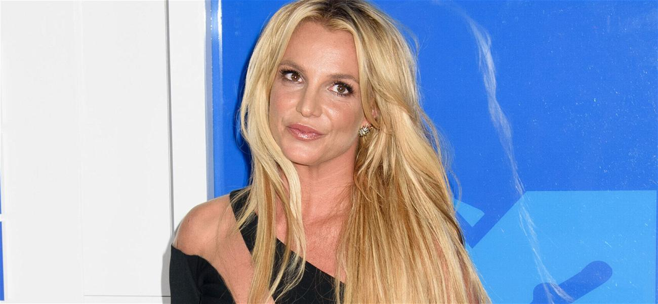 Britney Spears' Conservator SLAMS Her Father For 'Thinly Veiled' Attempt To Clear His Name