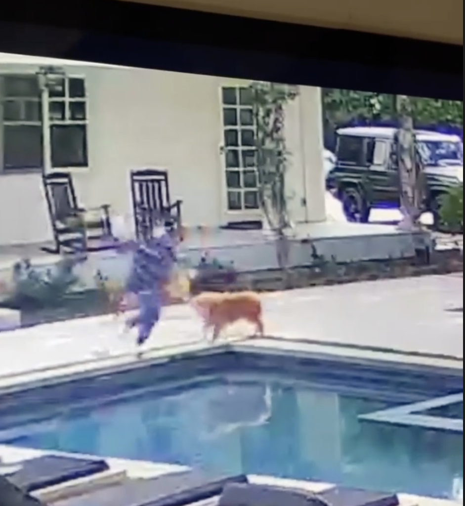 Kyle Richards jumping into her pool
