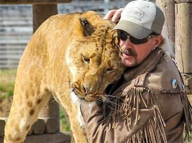 PETA Breaks Their Silence On 'Tiger King' Star Joe Exotic's Reduced Prison Sentence