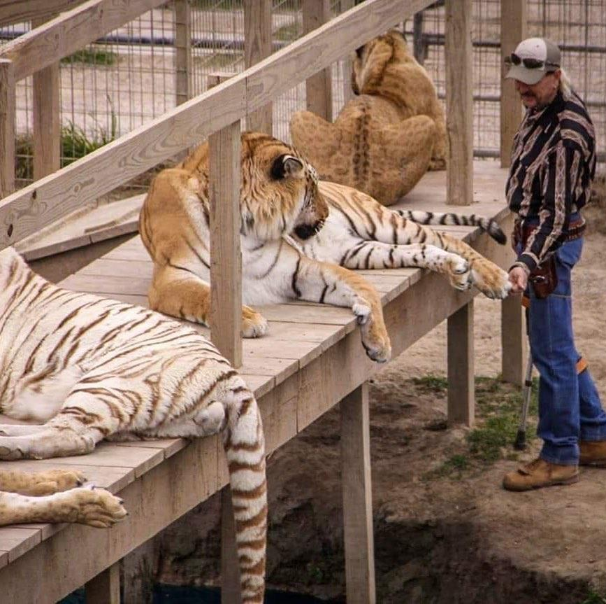 PETA Breaks Silence On Joe Exotic's Prison Reduction