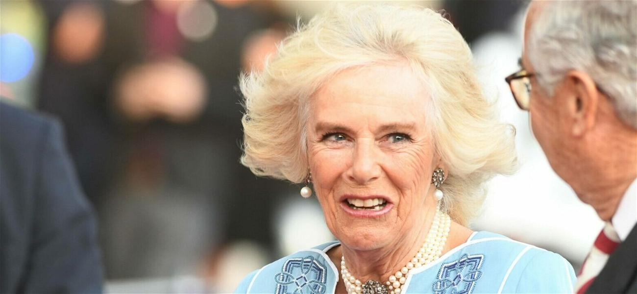 Will Harry's New Book Keep Camilla From Becoming Queen?