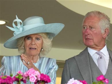 Could Prince Charles Give His Brothers A Cold Shoulder When He Becomes King?