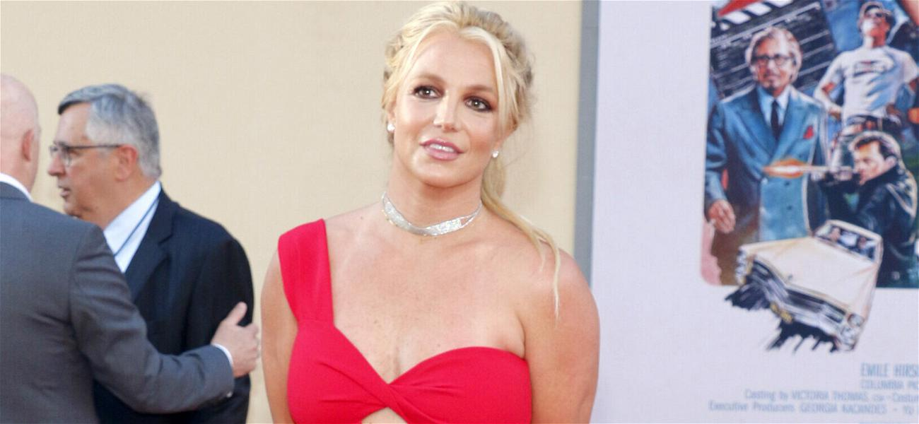 Britney Spears Housekeeper Sustained 'No Injuries' In Slapping Incident