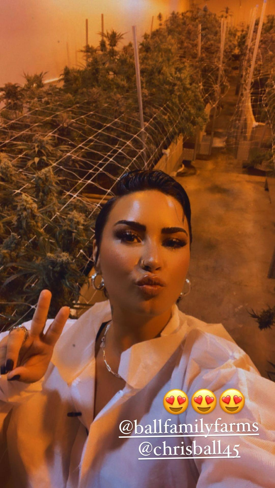 Demi Lovato Shares Video Smoking Weed, 'I'm California Sober!'