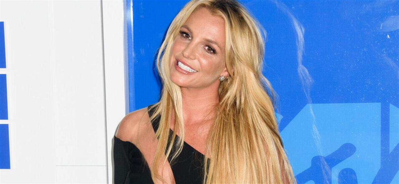 Britney Spears Sweeps Home For Spying Equipment While On Vacation?!