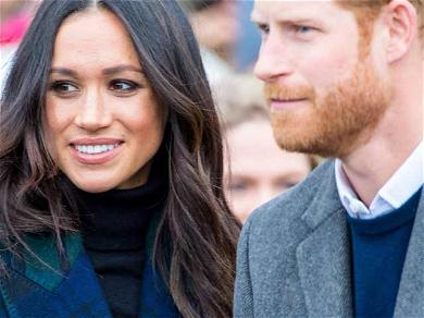 Prince Harry And Meghan Markle Give Way To Their Sustainable Investment Plans