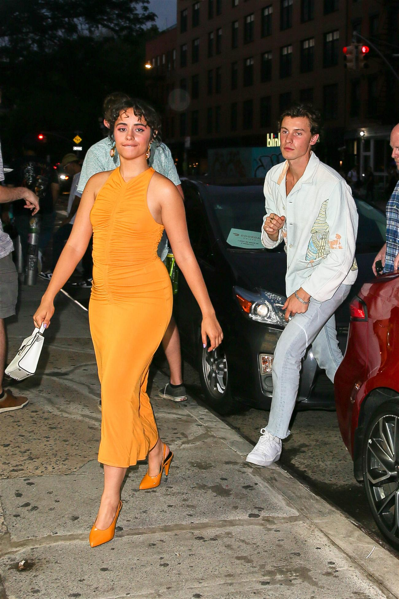 Camila Cabello and Shawn Mendes seen all in love while having a date night in New York City