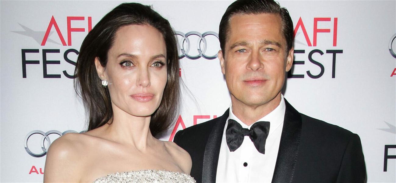 Brad Pitt Challenges Angelina Jolie's Victory In Child Custody Case