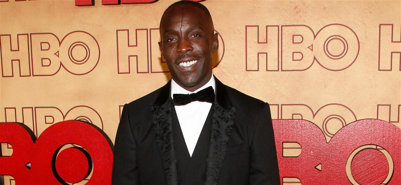 'The Wire' Star Michael K. Williams Shocking Official Cause Of Death Revealed