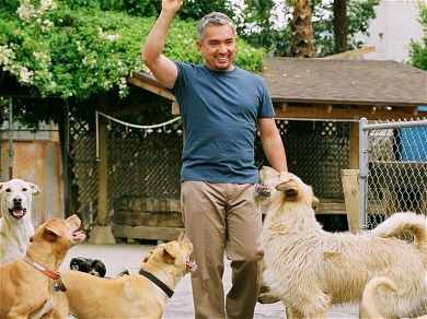 Cesar Millan Hit With Lawsuit Claiming He Covered Up Death of Queen Latifah's Dog