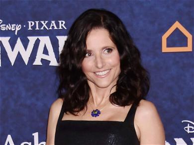 Julia Louis-Dreyfus Holds The Most Emmys in the Award's History