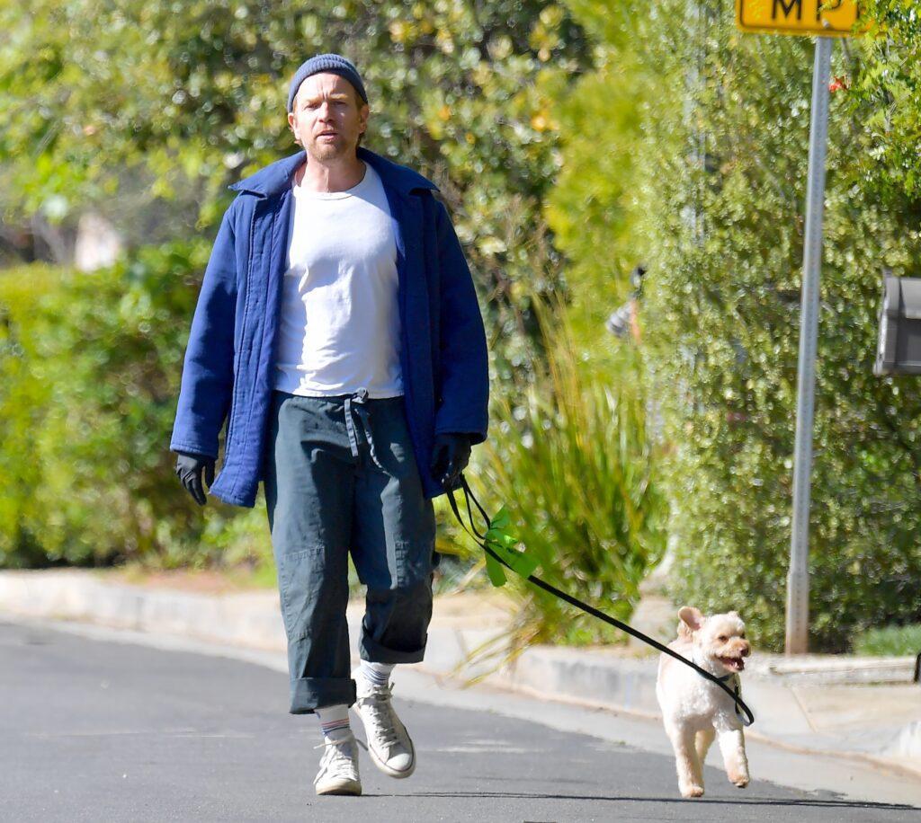 Ewan McGregor steps out wearing rubber gloves to walk his dog around Santa Monica