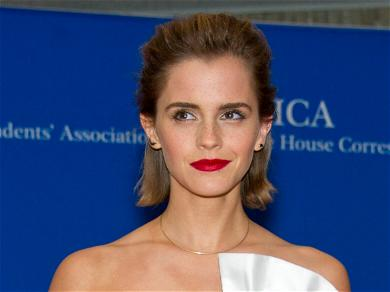 Emma Watson Was Smart With The Fortune She Made From 'Harry Potter'