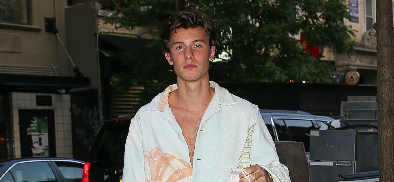 Shawn Mendes Says Taylor Swift's Boyfriend Joe Alwyn Has A 'Villain' Look To Him!