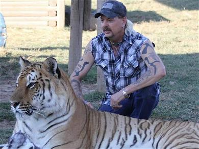 'Tiger King' Star Joe Exotic Begs Cardi B For Help With His Prison Release!