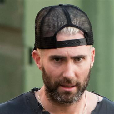 Adam Levine Defends Reaction After Fan Grabbed Him During Performance: 'That's Not Just Who I Am'