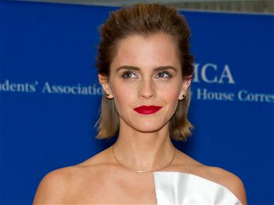 Emma Watson Almost Acted In A Different Disney Princess Live Remake Film