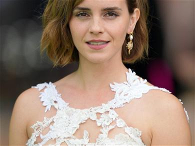 Emma Watson's First Red Carpet Appearance In Over Two Years Was For The Environment